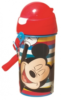 Mickey Water Canteen